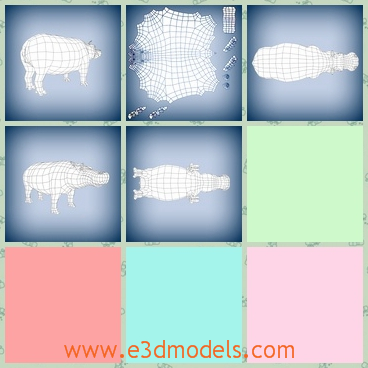 3d model of a hippo - This 3d model is about a big hippo which hasa heavy body. His legs are thick and short and his head is very long.