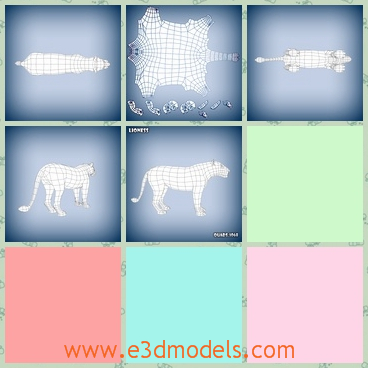 3d model of a lion base mesh - This 3d model is about a lion base mesh. This lion has a small head and a thin tail which is not very hairy.