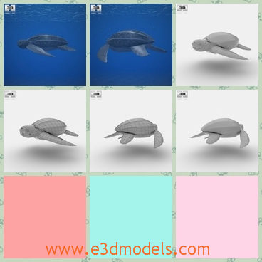 3d model the turtle with four legs - This is a 3d model about a turtle,which lives in the sea and the four legs are flat and short.