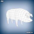 3d model of a pig