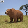 3d model the fat bear