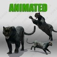 3d model the panther