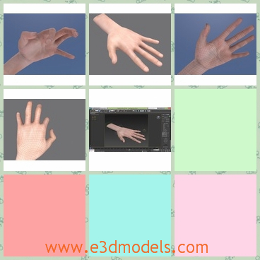 3d model of rigged hand - This 3d model is about a fully rigged hand which is useful for many purposes and its controllers are quite handy.