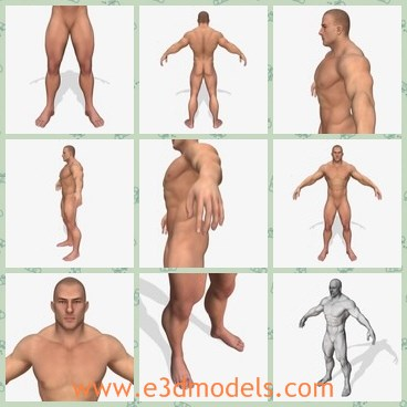 3d model the naked man - This is a 3d model of the naked man,who is strong and detailed.The man has perfect edge-loops based topology with rational polygons count.