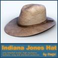 3d model the hat for men