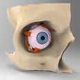 3d model the human eye