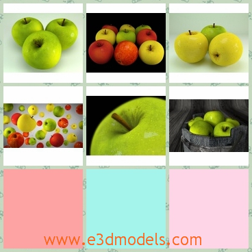 3d model apples - This is a 3d model about the apples,which is big and colorful.The apples have different textures for diffuse and a bump and a specular map is included.