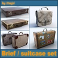 3d model the luggages