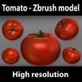 3d model the tomato