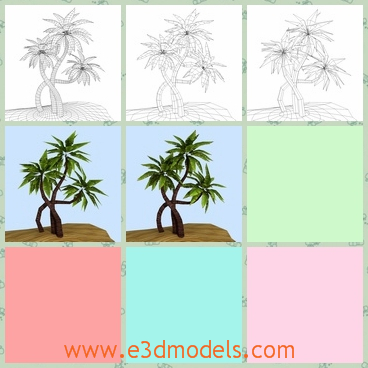 3d model of exotic plam tree - This 3d model is about an exotic plam tree which has crooked branches and many long narrow leaves in healthy green color.