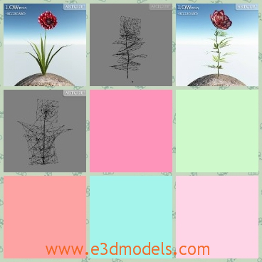 3d model the flower in red - This is a 3d model of the flower in red,which is standing alone in the wind and the leaves are green to see.