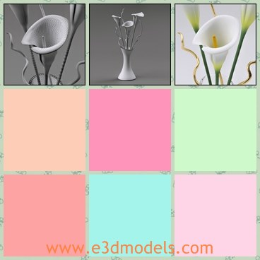 3d model the flowers - This is a 3d model of the lilies flowers in glass vase,which is white and pretty placing in the living room.THe model is presented withtwisted branches in a contemporary glass vase.
