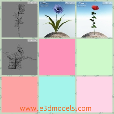 3d model the flowers - This is a 3d model of the flowers on a billboard,which is the newest type to be presented in the market.