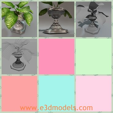 3d model the plant - This is a 3d model of the plant,which is placed in the silver pot.The plant is green and flourish.
