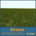 3d model the grass