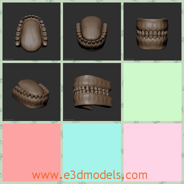 3d model the teeth of human beings - This is a 3d model of the teeth of human beings,which is small but ugly to see.Ths model is in brown and it is closed together.
