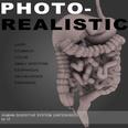 3d model the digestvie system of human